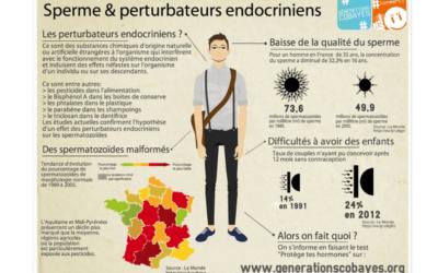Perturbateur endocrinien: effets sur notre santé